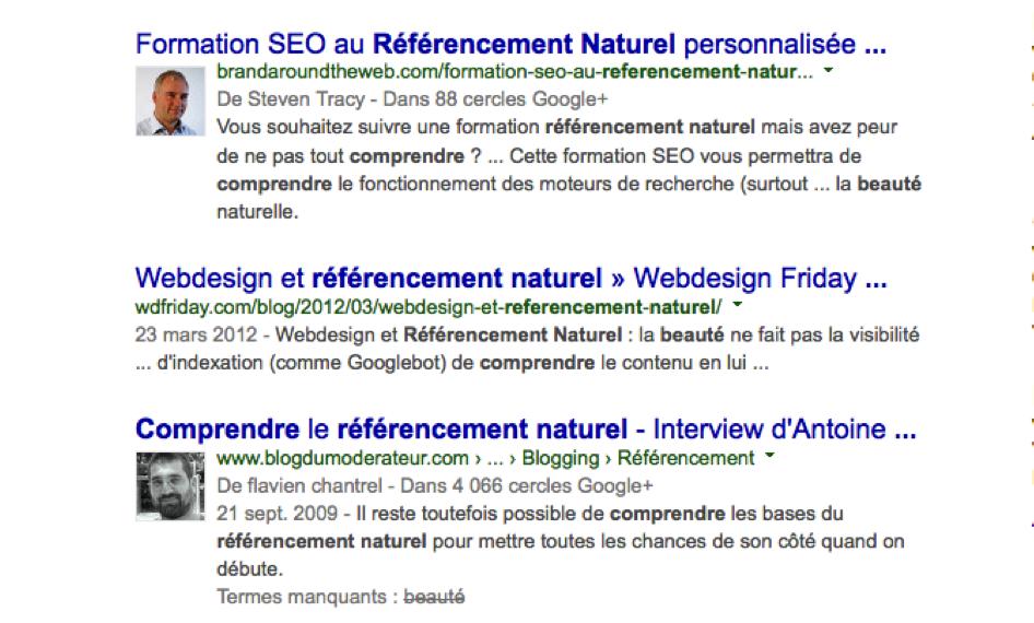 Google colibri référencement naturel beauté